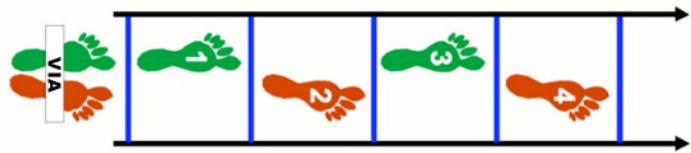 Risultati immagini per skip 1 appoggio scaletta